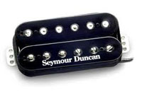 The Stone Age Institute Musicians: Seymour W  Duncan